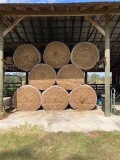 Hay Picture.jpg
