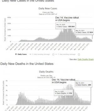 vaccine vs new.jpg
