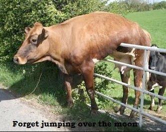 jumpingmoon.jpg