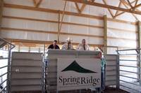 "Highlight for album: Spring Ridge Cattle Co. ""Running the Ridge"" Charolais Sale"